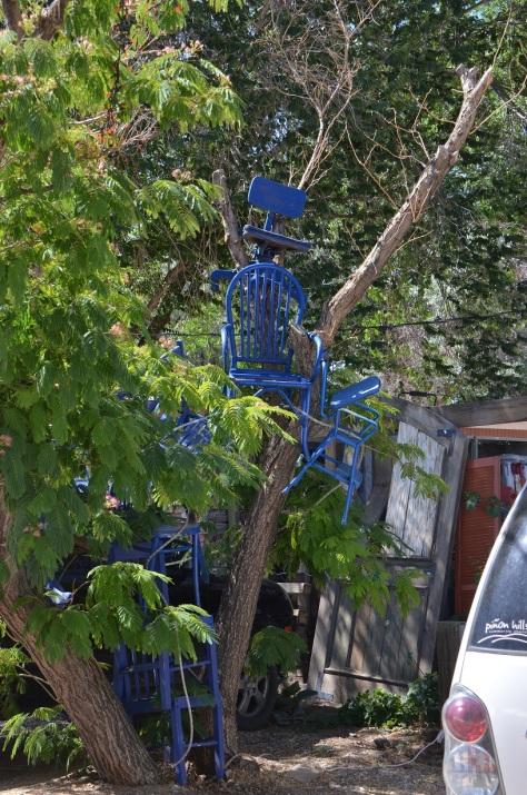 Blue Chair Tree